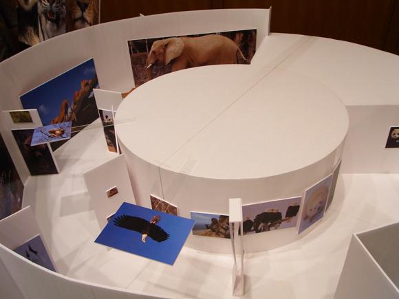 「銀座どうぶつ園」の会場模型。RING CUBEの住所:東京都中央区銀座5-7-2 三愛ドリームセンター(受付9階)