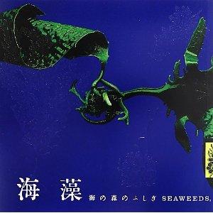 新刊案内 横浜康継ほか 著『海藻 海の森のふしぎ』