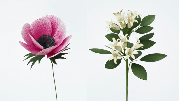 新世代の紙が可能にした新たな花の美「ペーパーエデン・ウィズ・ナオロン」。3月31日まで表参道で展示