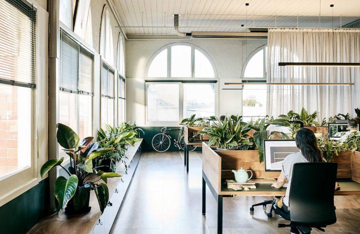 メルボルンの緑あふれるワークスペース。設計事務所が実践するサスティナブルなオフィスデザイン