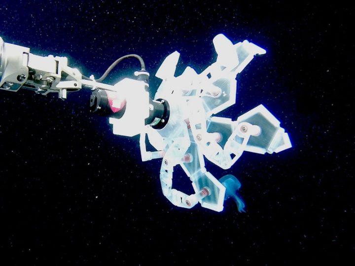 ハーバード大学の3研究機関が折たたみ式多面体採取器を開発 折り紙をヒントに繊細な深海生物を捕獲&リリ…