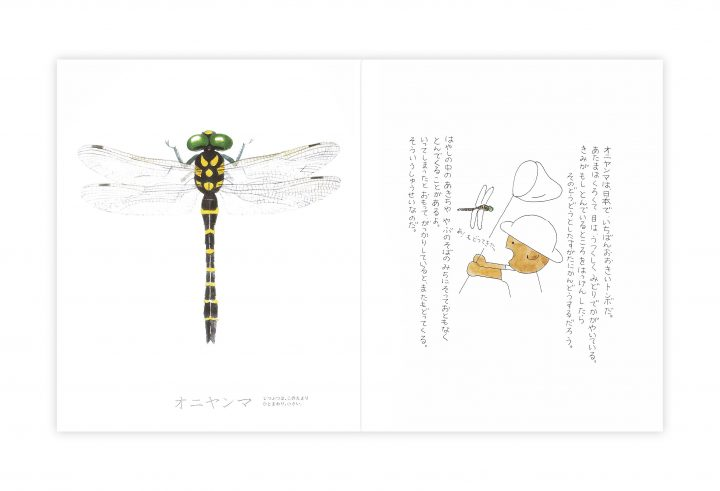 戸田デザイン研究室による昆虫の魅力を伝えるロングセラー絵本 「昆虫とあそぼう」2018年も販売