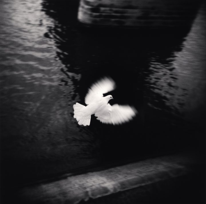世界的な人気を誇る風景写真家マイケル・ケンナの日本初回顧展 代表作から初公開作品まで45年の活動の集大成