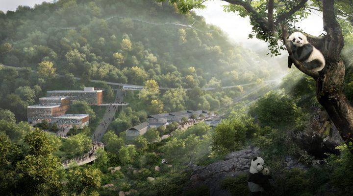 デザインファーム・Sasakiが中国の成都パンダ保護区のマスタープランを担当 都市の急成長と種の保存を両立…