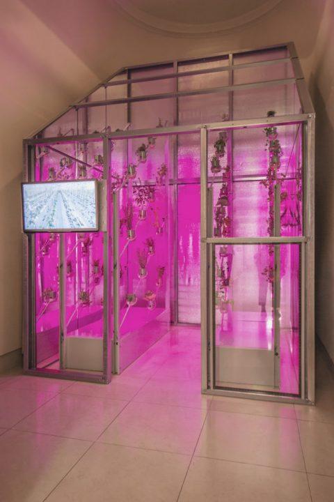 オランダのデザイナー・Marjan van Aubelが「Power Plant」を発表 ソーラーガラスを利用した温室で食糧栽…