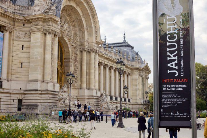 フランス・パリで伊藤若冲「動植綵絵」の初展示が実現 ジャポニスム 2018の一環で