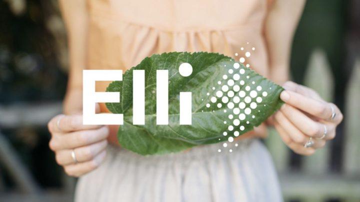 フォルクスワーゲンがベルリンに新会社「Elli」を設立 エネルギー提供や充電ソリューションのサービスを展開