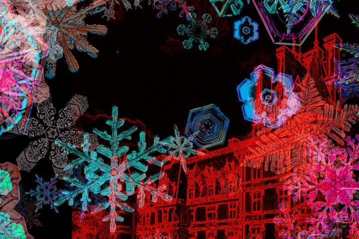 デジタルアーティスト ミゲル・シュバリエの個展 雪の結晶をテーマにした「D'UN RÊVE À L'AUTRE 2018」