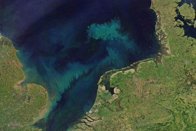 気候変動で海の青色や緑色がどんどん濃くなる!? 植物プランクトンの変化が海の色に影響する研究結果が発表