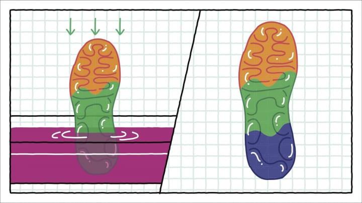 Nike Airの新しいデザインのカギは「浸染」 ソールをカラフルにする独創的なプロセス