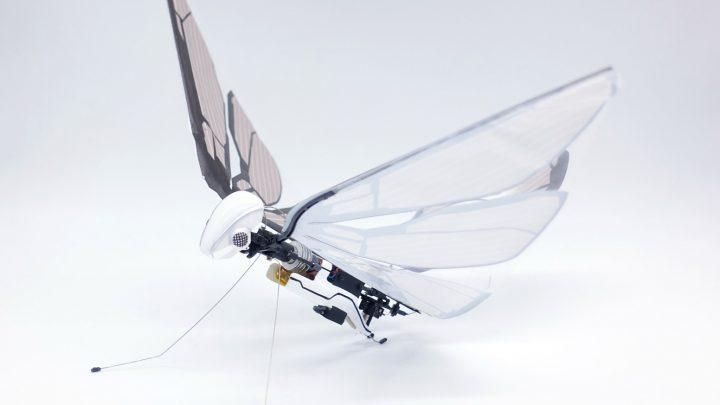 鳥の自然な羽ばたきをリアルに再現 バイオミメティックな遊具「MetaFly」