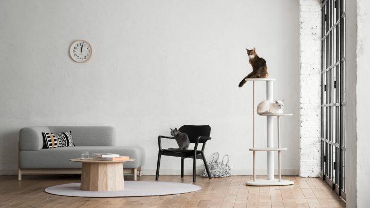 カリモクとRINNの新ブランド「KARIMOKU CAT」  猫目線にこだわった猫用木製家具