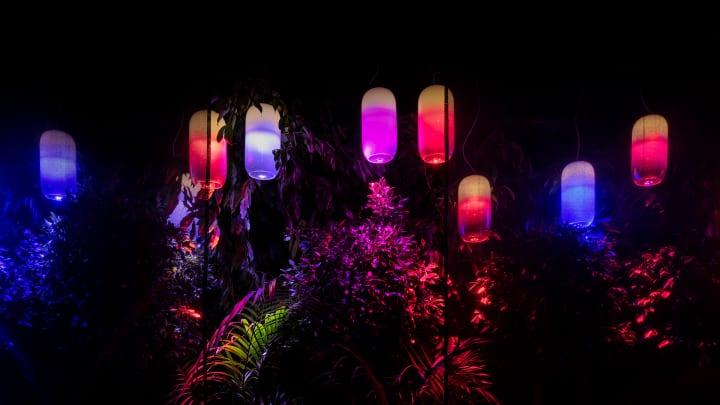 アルテミデと建築設計事務所 BIGがコラボした フレキシブルな発光チューブ「La Linea」