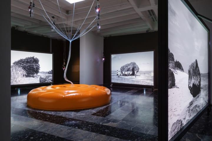 第58回ヴェネチア・ビエンナーレ国際美術展 日本館展示  異なる分野のアーティスト4名が共演する「Cosmo-E…