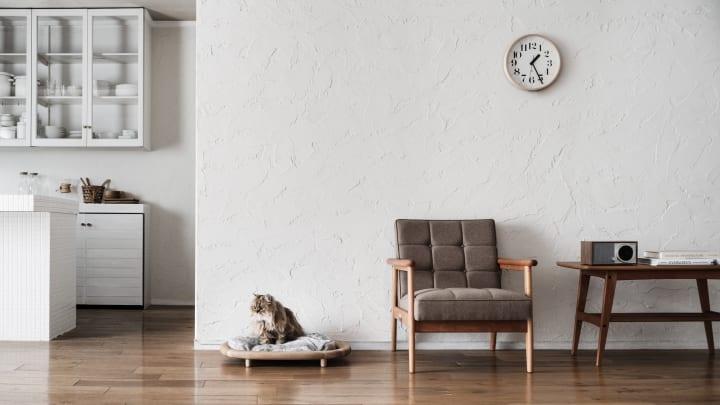 カリモク家具とRINNがコラボレーションした 猫用木製家具ブランド「KARIMOKU CAT」第2弾が登場