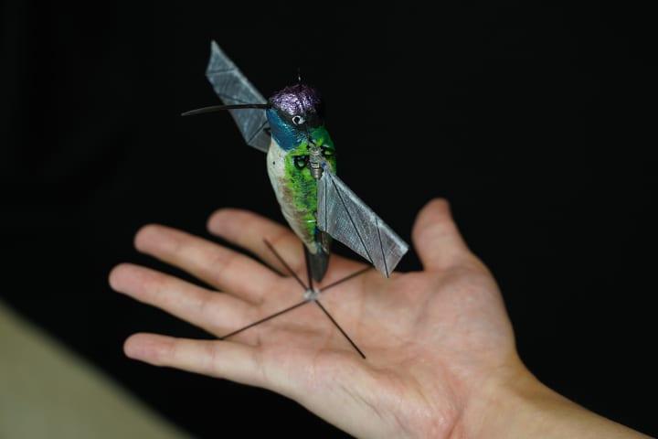 米パデュー大学が手がけるハチドリのようなロボット ドローンよりも小型化可能でAIも搭載