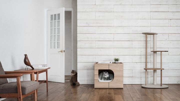 カリモク × RINNによる「KARIMOKU CAT」から 猫トイレ収納家具「KARIMOKU CAT RESTROOM」が登場