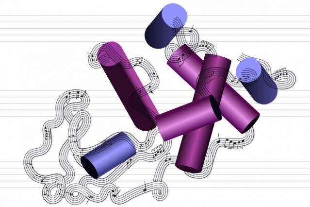 タンパク質が音楽を奏でる!? MIT研究チームがアミノ酸の配列を音楽のシークエンスに変換