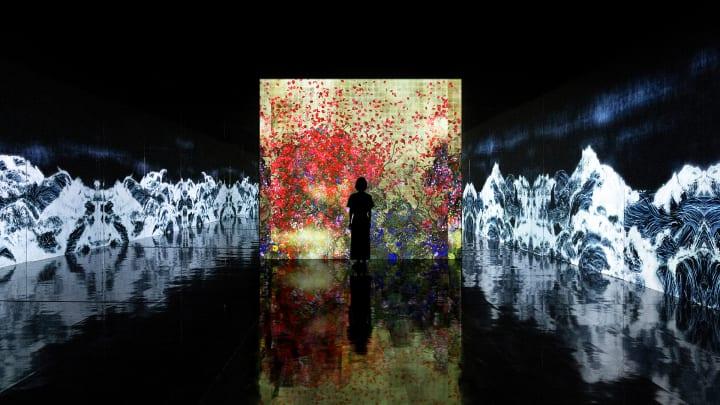 個展「チームラボ 永遠の海に浮かぶ無常の花」が開催 人々が他者と共に作品の一部となる展覧会