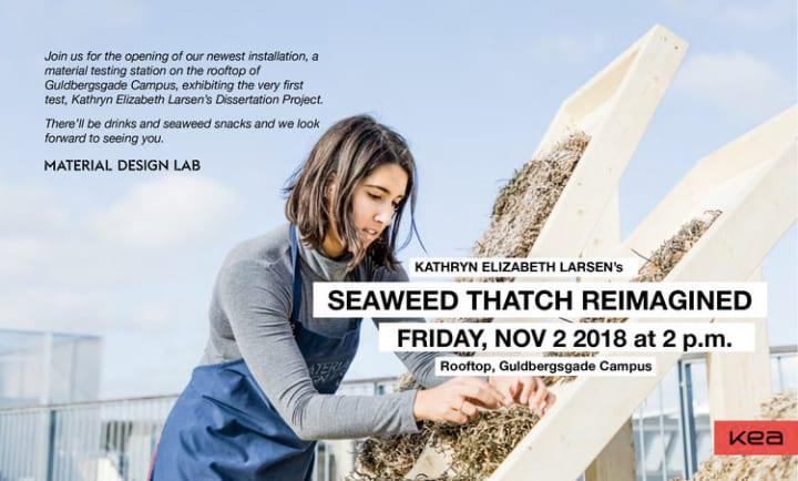 デンマーク・レス島に伝わる「海藻葺き」の屋根とは? デザイン学校の学生が再現に挑戦