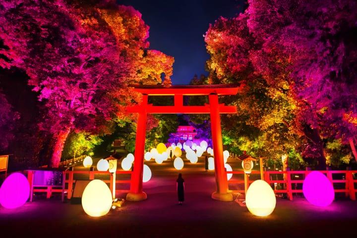 チームラボが京都の世界遺産 下鴨神社にて今年もアート展 「下鴨神社 糺の森の光の祭 Art by teamLab R…