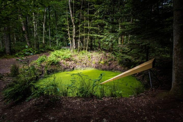 電子を放つ微生物を使った光のインスタレーション Teresa van Dongenによる「Mud Well」