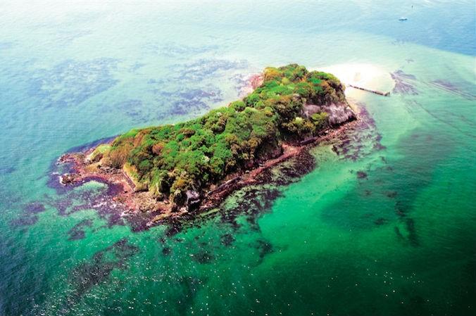 東京湾に浮かぶ夜の無人島が舞台のアートイベント 「Sense Island -感覚の島- 暗闇の美術島」が開催