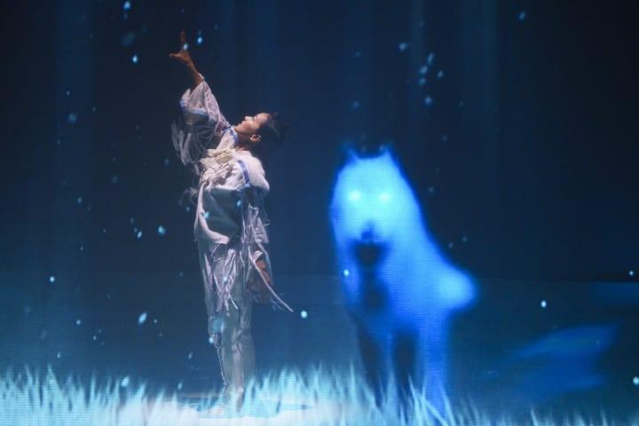 北海道 阿寒の森で展開される2つのデジタルアート 「ロストカムイ」と「カムイルミナ」に行ってきた