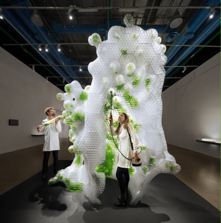 豊かさとは何か、人間とは何か、生命とは何かという根源的な問いを考える 「未来と芸術展:AI、ロボット、…