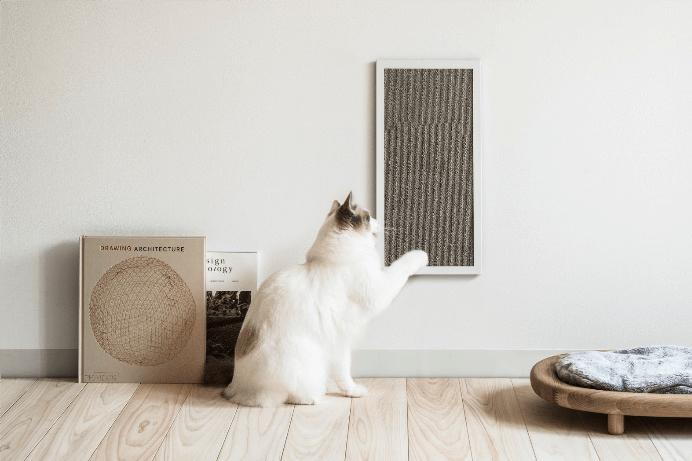 サンワカンパニーとRINNが共同開発した 猫用爪とぎ「NEKOBOARD」と「NEKOFLOOR」ウォルナットが登場