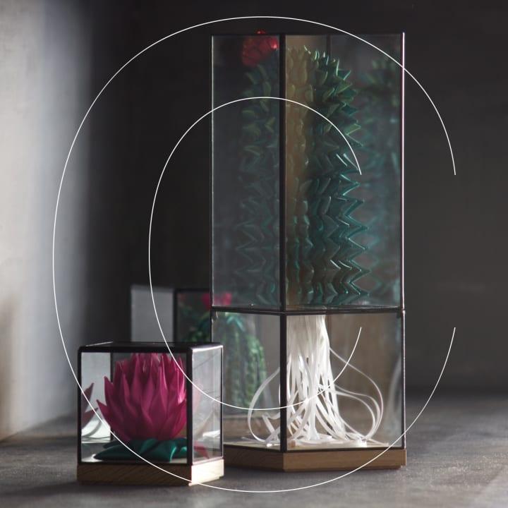 RIBBONESIAと10¹² TERRAによる作品展 「The Wunder Plants」がCIBONE CASEで開催