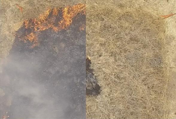 山火事を長期間・効果的に予防するには? スタンフォード大学が難燃性のゲル状液体を開発