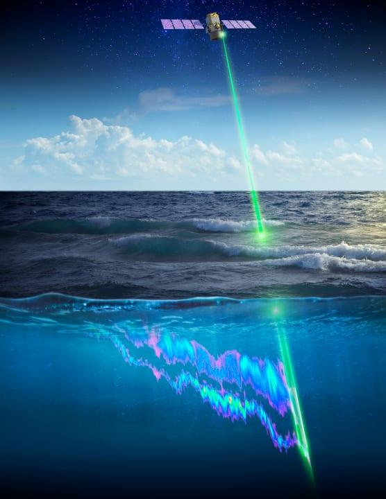 小さな海洋生物は日々どんな移動をしている? NASAの地球観測衛星がその行動パターンの観測に成功