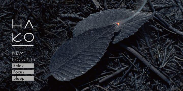 薫寿堂の葉っぱをモチーフとしたお香「HA KO」から ラグジュアリーでモダンなブラックラインが登場