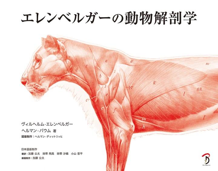 100年を超えて愛される古典名著が復刻 「エレンベルガーの動物解剖学」が刊行