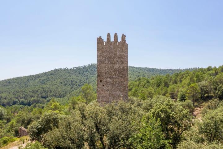 13世紀スペインの城跡を補強して展望台にもなる Carles Enrich Studioによる木造構造物