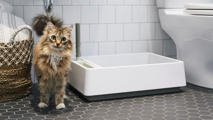 従来の猫用トイレのデザインにしっくりこない人のために Tuft + Pawが手がけた「Cove」が登場