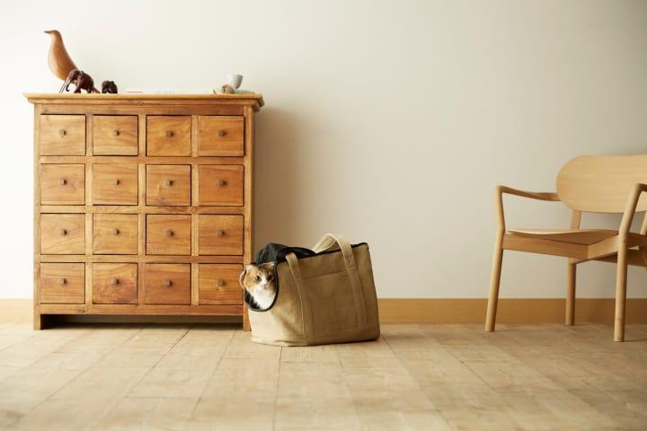 マザーハウスとRINNがコラボレーション 猫にやさしい「ネコキャリーバッグ」発売へ