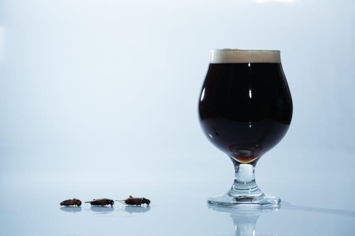 昆虫食のANTCICADAと遠野醸造が共同開発 世界初のコオロギを原料に使用したクラフトビールが限定販売