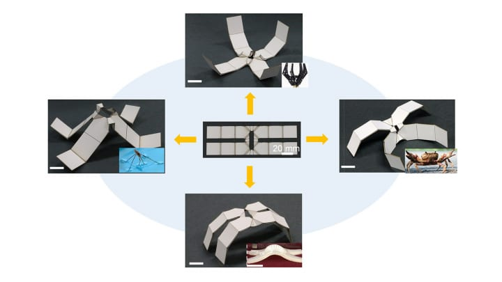 アメリカの大学が熱に反応して形を変えるシートを開発 「切り紙」の技術をヒントに2Dから3Dへ変形