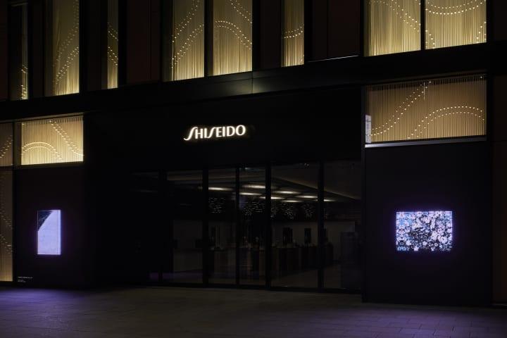 SHISEIDO THE STORE ウィンドウギャラリーにて 東松照明のインスタレーション「さくら 桜 サクラ」公開中