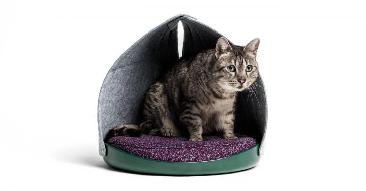 モダンなカラーリングのネコ用ベッド LAYERがデザインした「Canopy Bed」