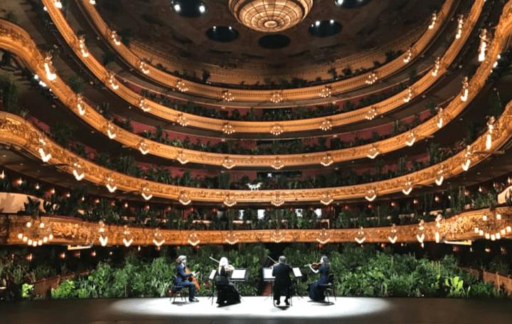 バルセロナのオペラハウス「リセウ大劇場」が 植物を観客として公演を再開