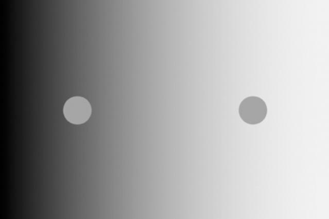 MIT、色の錯覚として有名な「対比明度」の現象と 視覚に関するメカニズムを解明