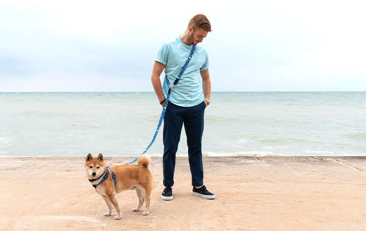 犬の散歩中に両手が自由になる 英ペットブランドHiro + Wolfの「ハンズフリーリード」