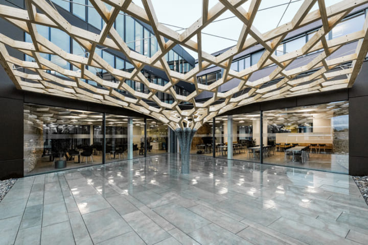 スイス連邦工科大学が手がけた「Future Tree」 木造建築とデジタルコンクリートの可能性を探るキャノピー