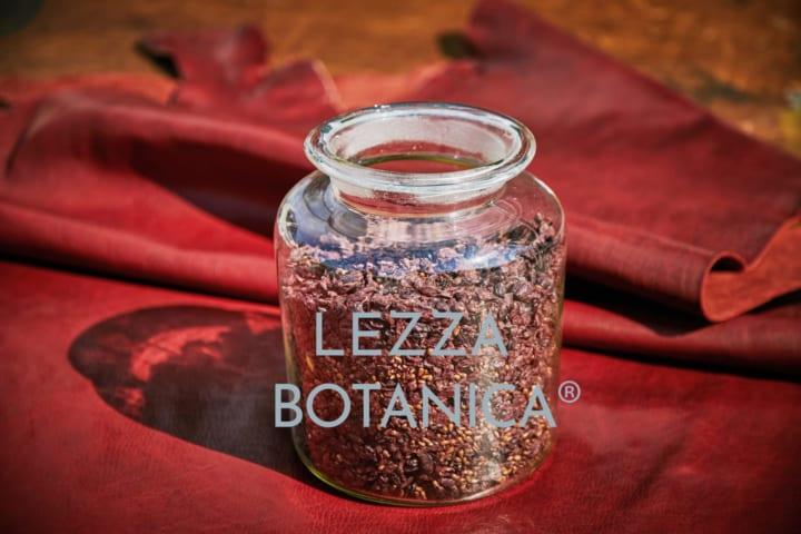 ブドウなどの植物の副産物を再活用した サステナブルレザー「LEZZA BOTANICA」