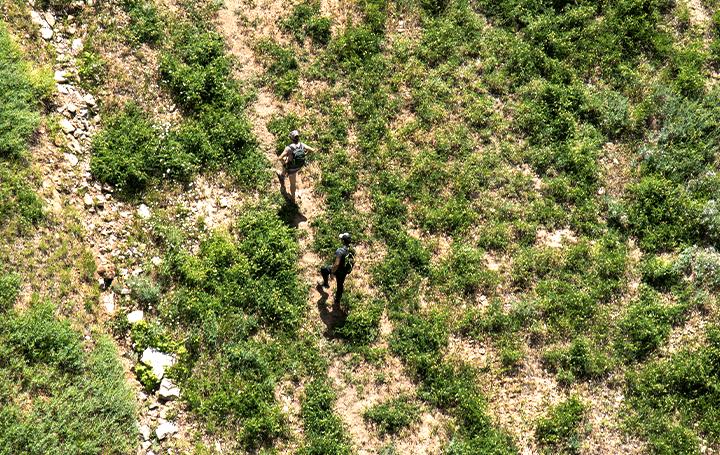 近畿大学と日本山岳救助機構、ドローンとQRコードを用いて 山の遭難者を捜索する光探索システムを開発