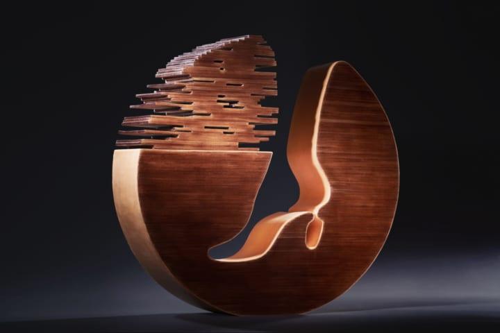 靴職人・三澤則行による靴のアート作品「足の巣」 靴というものの新たな様式を提示