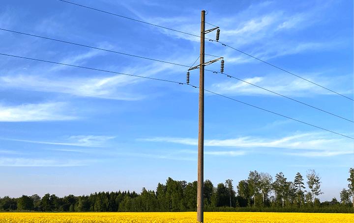 NEC、光ファイバセンシングとAI技術で 電柱のひび割れを遠隔で判定する実証実験を行う